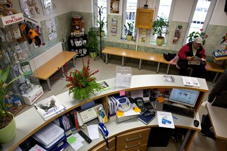 Budafoki Állatgyógyászati Központ recepció